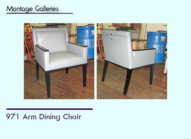 CSI_Montage_Galleries_New_971 Arm Dining Chair